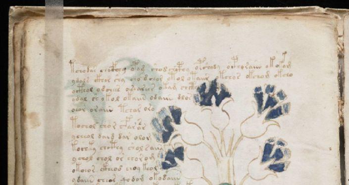 Páginas com texto do manuscrito de Voynich