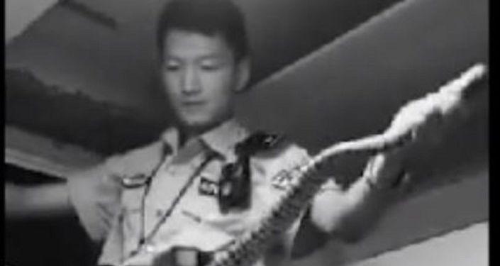 Policial 'detém' serpente de 1,5 m com suas próprias mãos