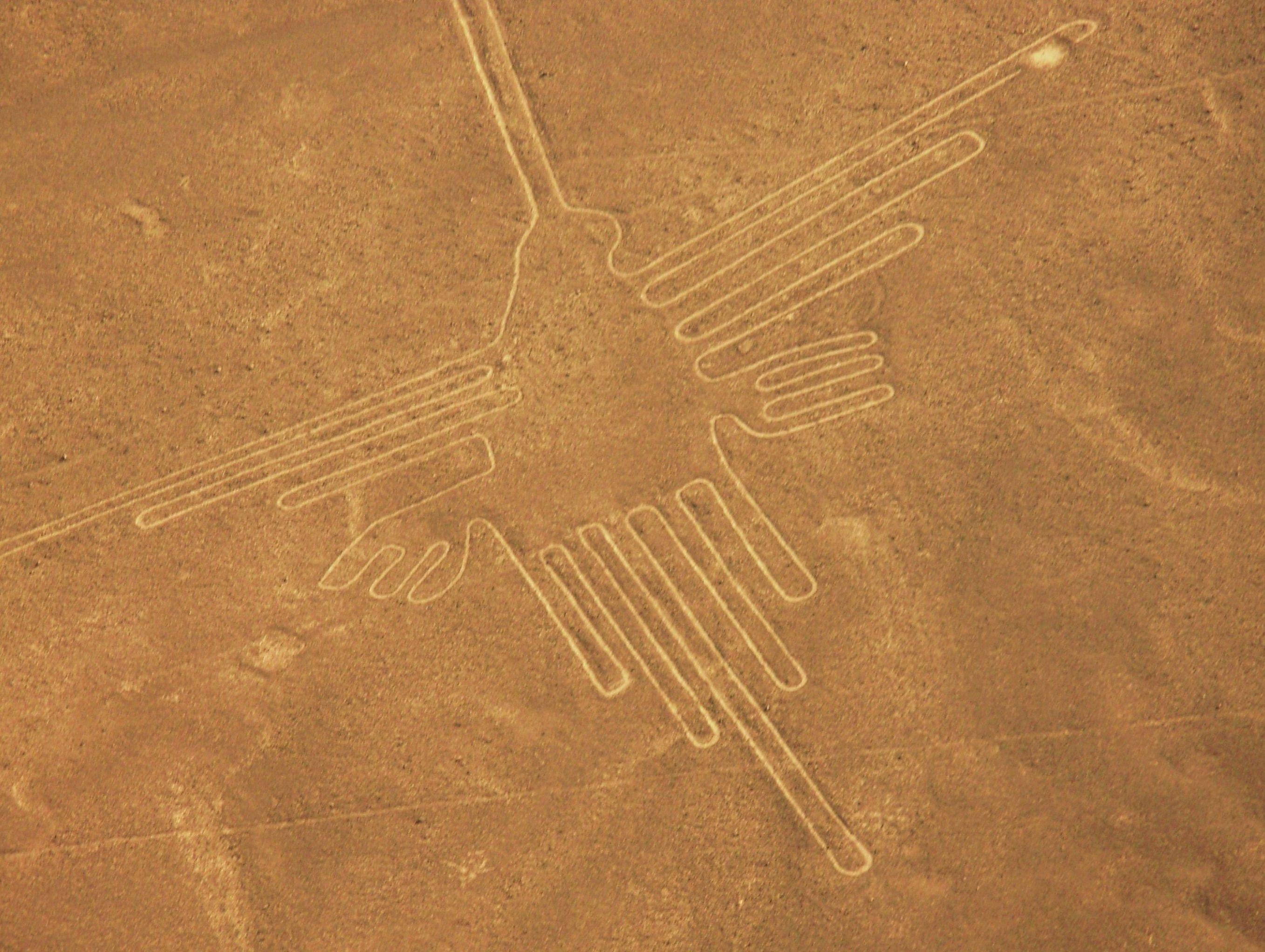 Aves gigantes na cidade de Nazca