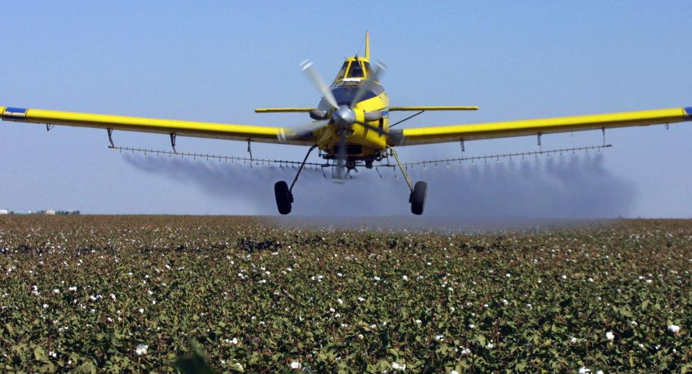Avião espalha pesticida em uma plantação
