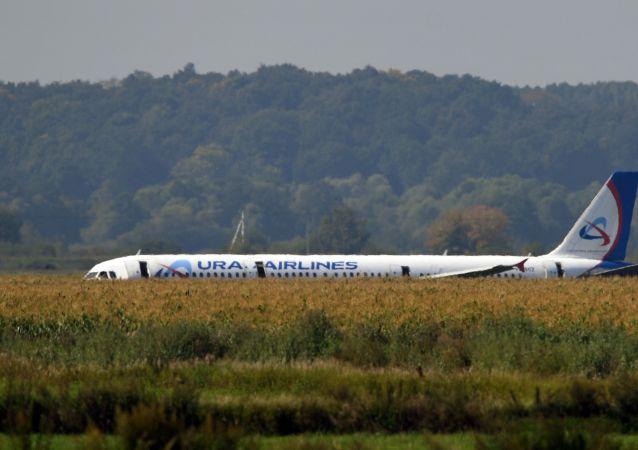 Avião A321 da companhia aérea Ural Airlines após o pouso de emergência perto do Aeroporto Internacional de Zhukovsky