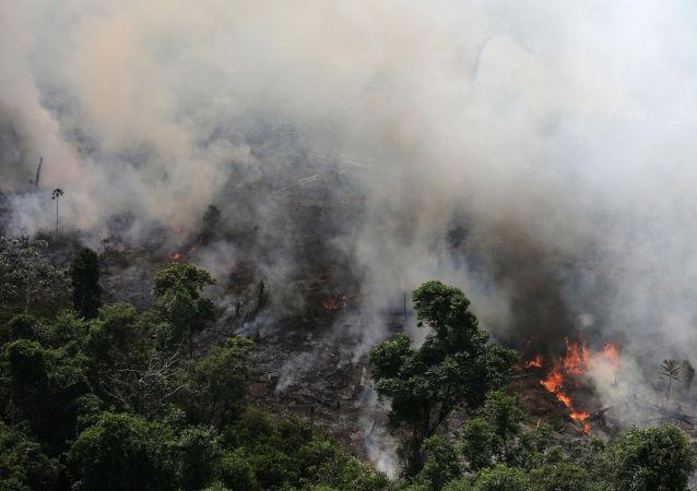 Imagem de queimada na Amazônia, na cidade de Novo Progresso, Pará.