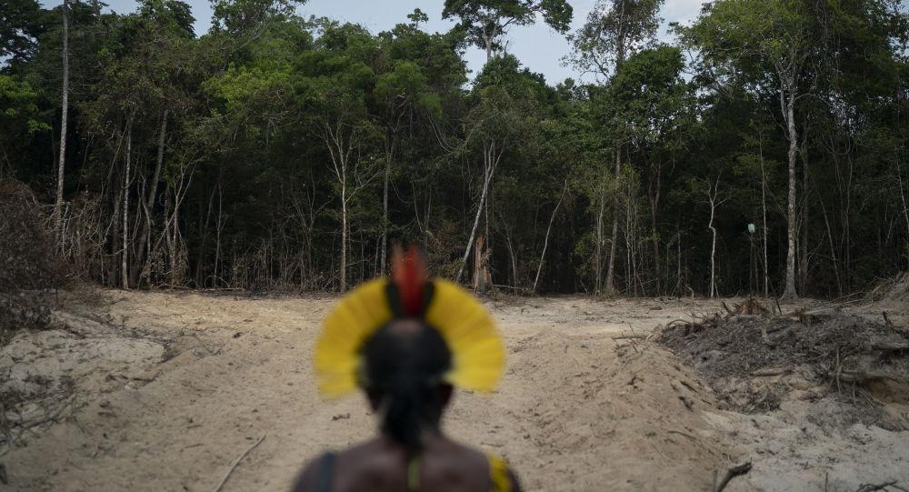 O chefe indígena Kadjyre Kayapo, da etnia Krimej, observa área desmatada da Amazônia na cidade de Altamira, no Pará.