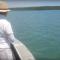 Crocodilo é pescado por homem na Austrália