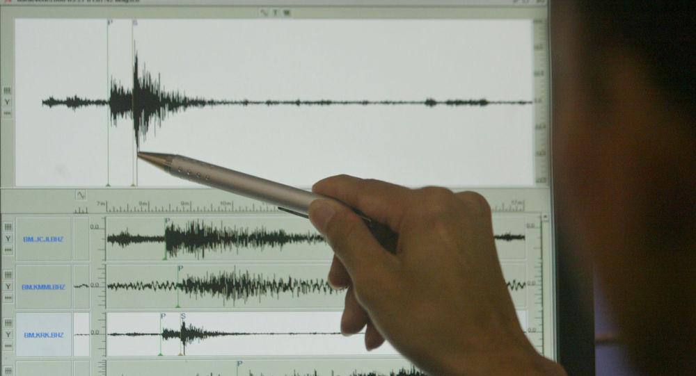 Sismógrafo (imagem referencial)