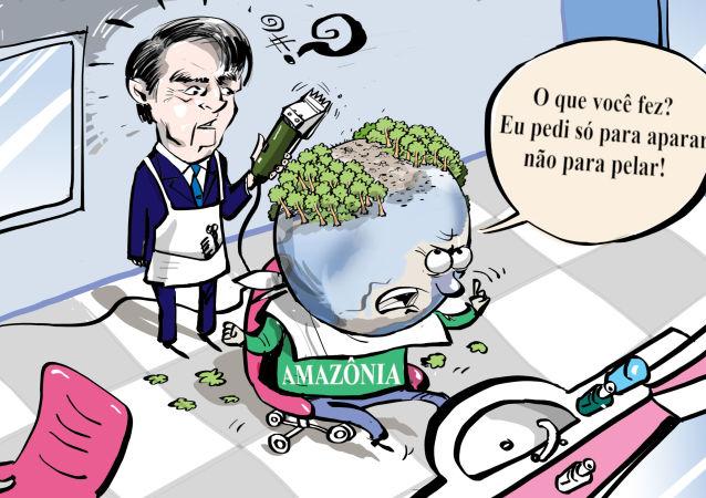 Bolsonaro cortando Amazônia mais do que devia