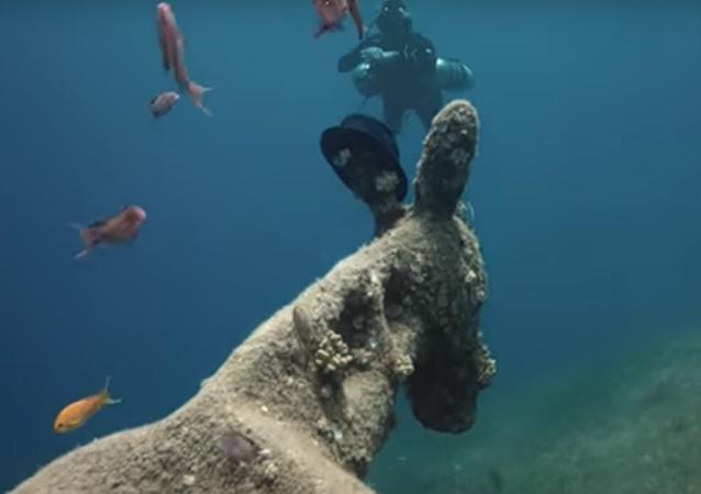 Russo encontra 'burro' vivendo debaixo d'água