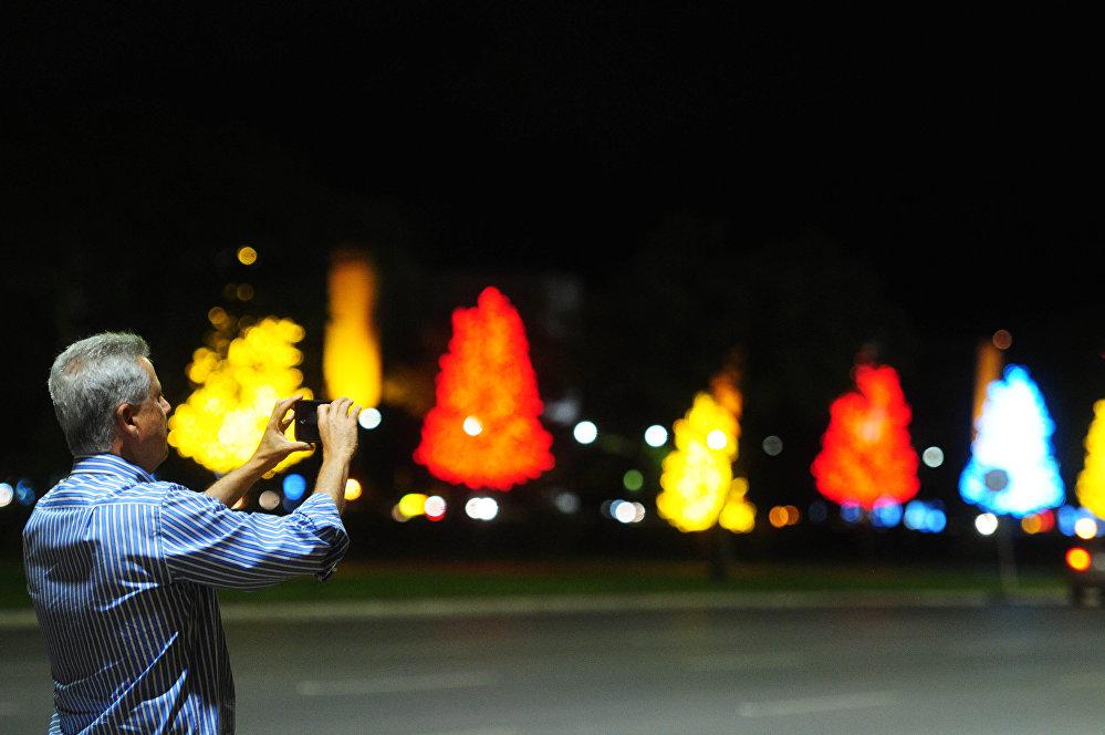 Com árvores coloridas, o canteiro central tem atraído motoristas que param os carros tirar fotos.