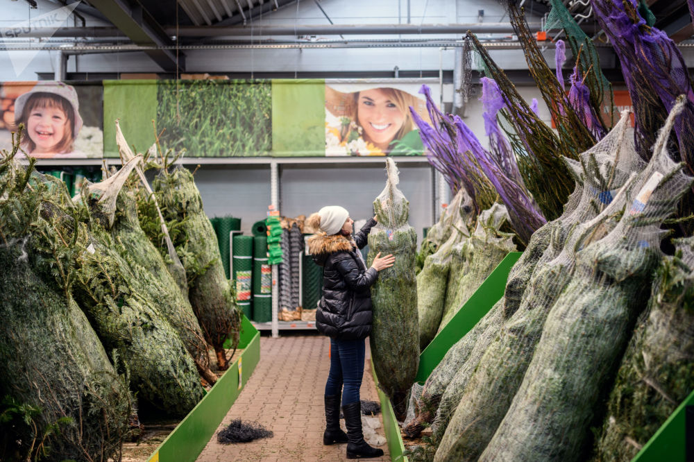 Menina escolhe uma árvore de Natal no hipermercado OBI, em Moscou