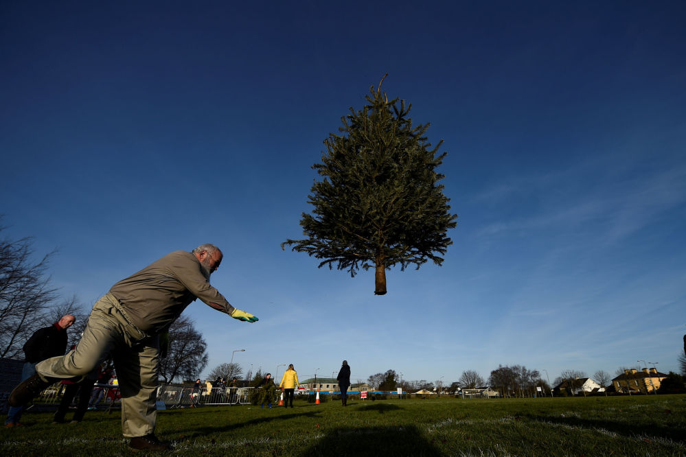 Competições de lançamento de árvores de Natal na Irlanda