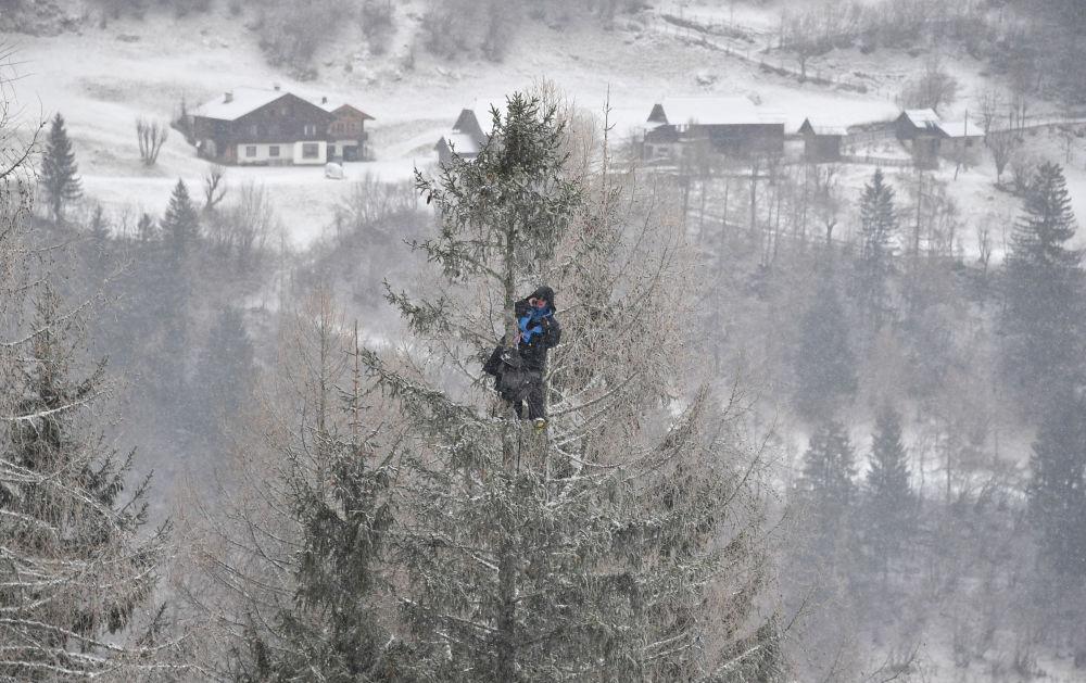 Treinador sobe a uma árvore para observar suas atletas durante o Campeonato Mundial de Esqui Alpino de 2018, na Áustria