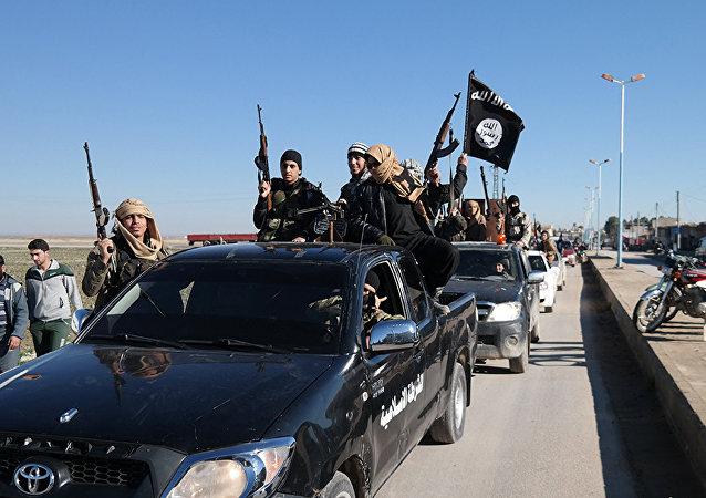 Terroristas do Daesh na Síria (foto de arquivo)
