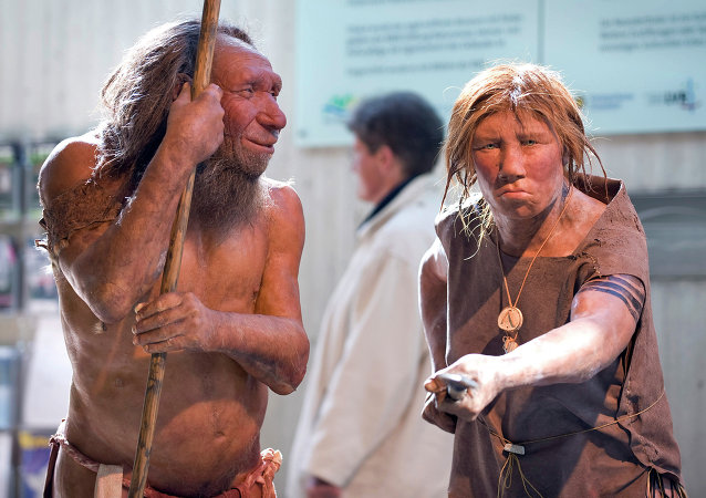Antigas espécies humanas (foto de arquivo)