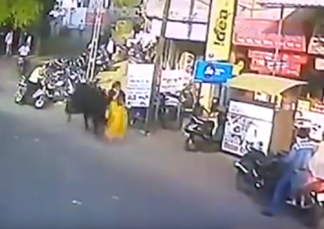 Touro ataca mulher na Índia