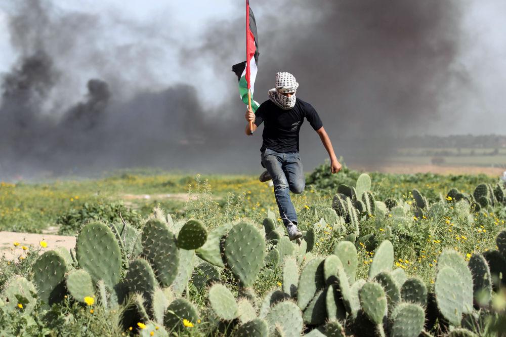 Manifestante palestino em campo de cactos durante confrontos com forças israelenses