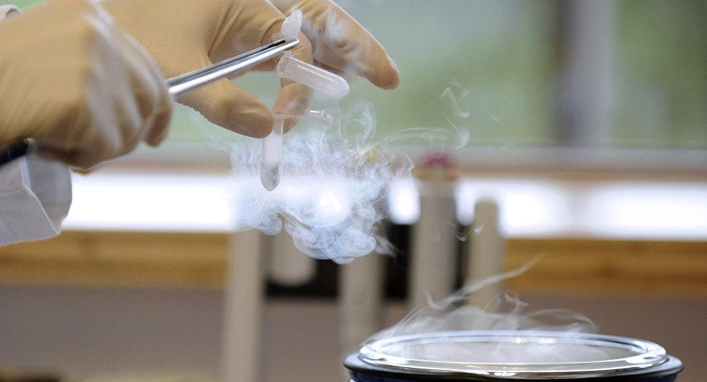 Pesquisador trabalhando com nitrogénio (imagem referencial)