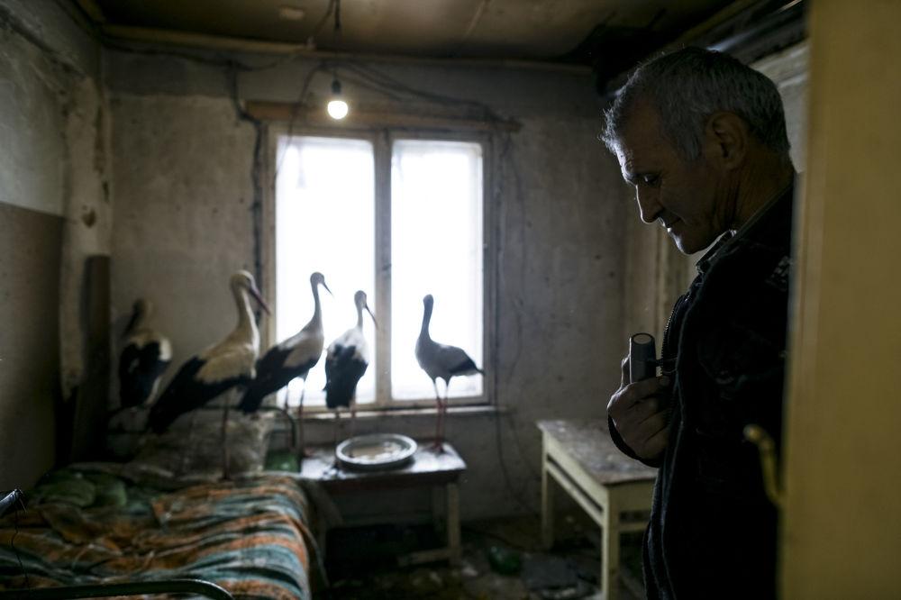 Safet Halil, que salvou cinco cegonhas de morrerem no frio na aldeia de Zaritsa, na Bulgária.
