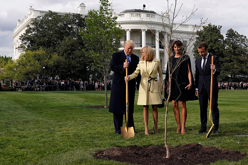 Plantaram uma árvore no jardim da Casa Branca.