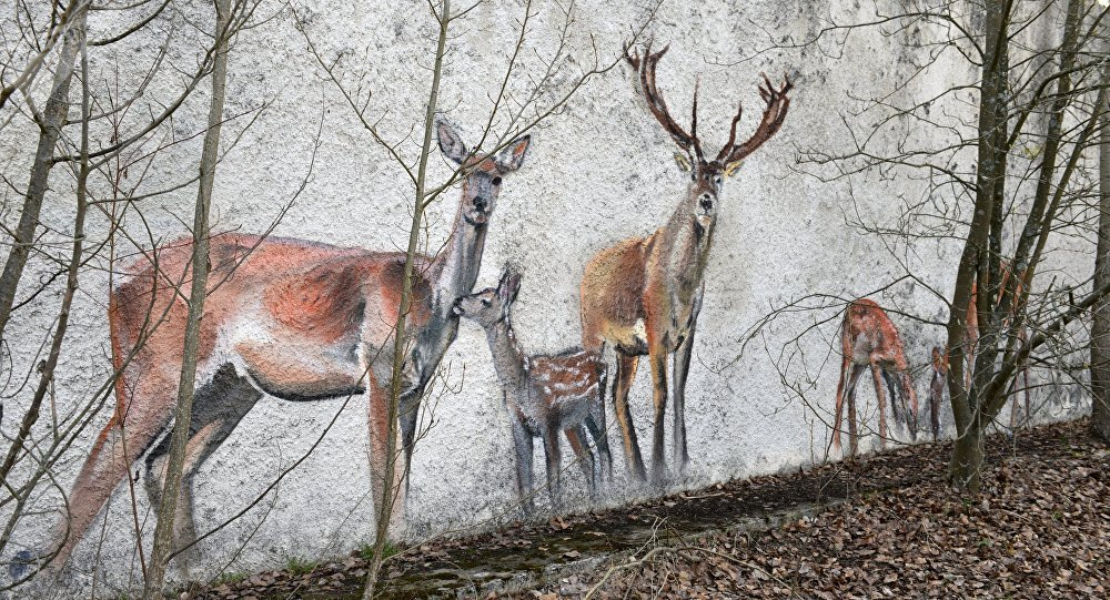 Pinturas na parede de um edifício abandonado na área da Usina Nuclear de Chernobyl