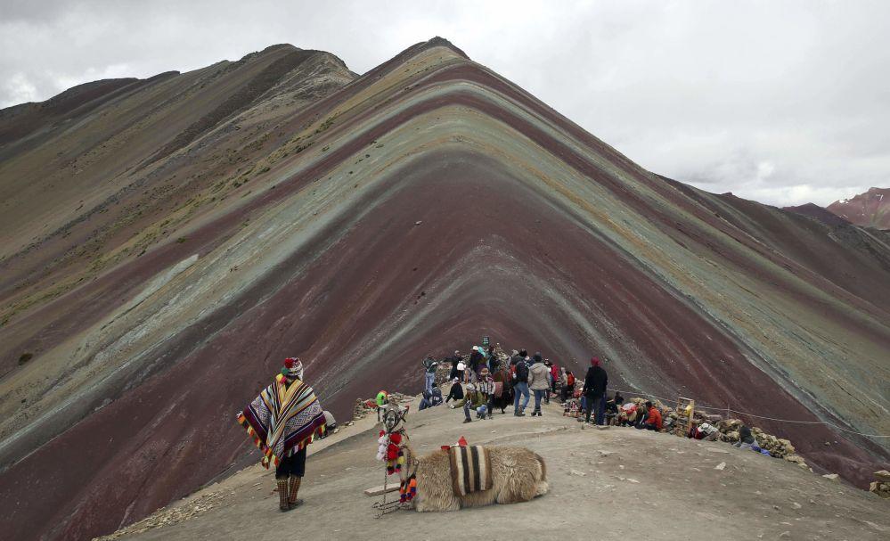 Morador indígena dos Andes com lama e turistas em frente da montanha Vinicunca, no Peru