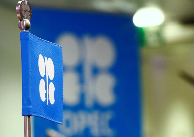 A bandeira da OPEP e o logotipo da OPEP em coletiva em Viena (foto de arquivo)