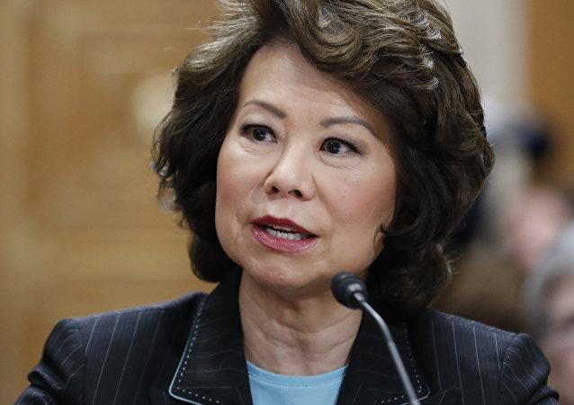 A secretária de Transportes Elaine Chao testemunha no Capitólio de Washington (Arquivo)