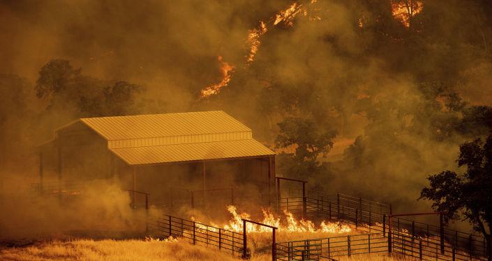 Incêndio florestal em Guinda, Califórnia (arquivo)