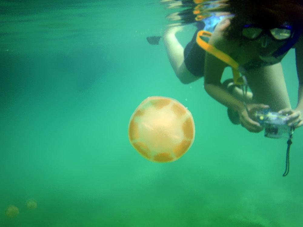 Muitos chegam ao lago para praticar fotografia submarina ou simplesmente gravar memórias inesquecíveis