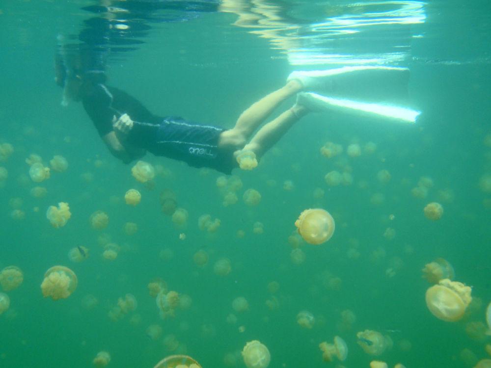 Mergulhadores gostam de aproveitar o tempo nesse lago, pois este possui um ecossistema único no mundo
