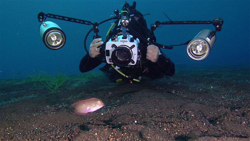 Fotógrafo submarino Juan Cuetos registra os habitantes marinhos perto das Ilhas Líparas