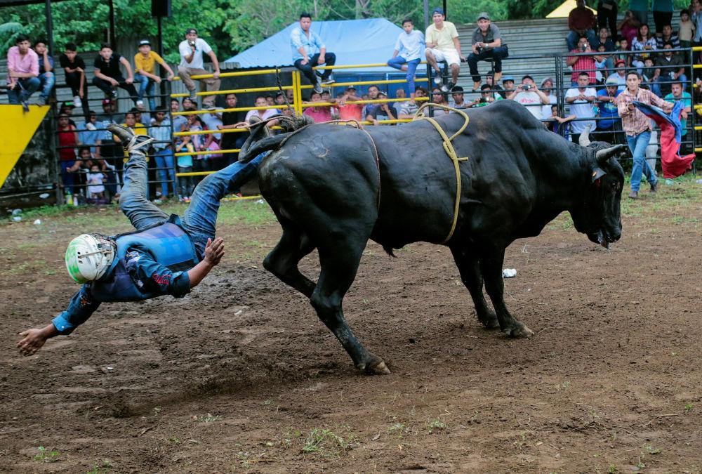 Participante cai do touro durante um rodeio no festival de São Domingos de Gusmão, na Nicarágua