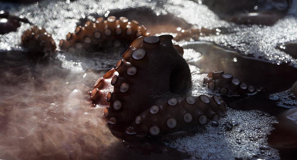 Tentáculos de polvo, Carvalhinho, Espanha, 7 de agosto de 2018 (imagem referencial)