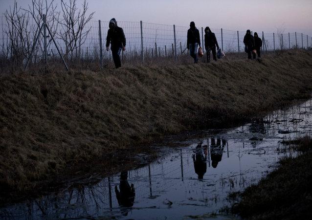 Imigrantes afegãos caminham até a fronteira sérvia com a Hungria, perto de Hajdukovo, a 150 quilômetros ao norte de Belgrado, Sérvia