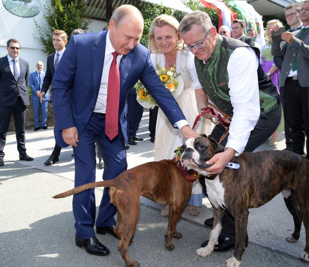 Vladimir Putin durante sua visita privada à boda de Karin Kneissl e Wolfgang Meilinger