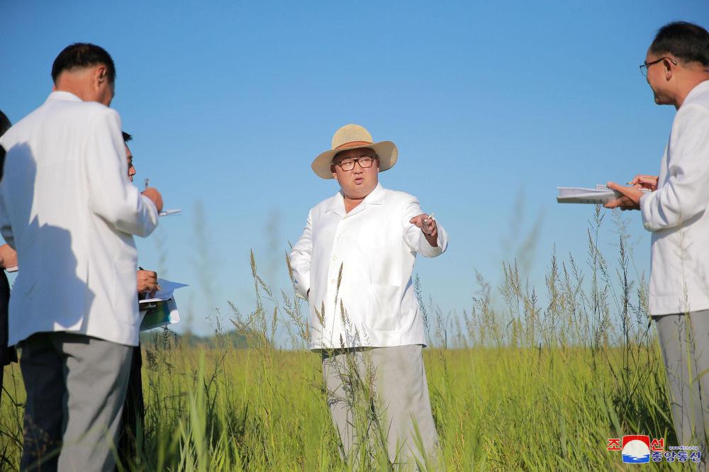 Líder norte-coreano Kim Jong-un dá instruções às autoridades locais no local da construção de estufas na cidade de Kyongsong