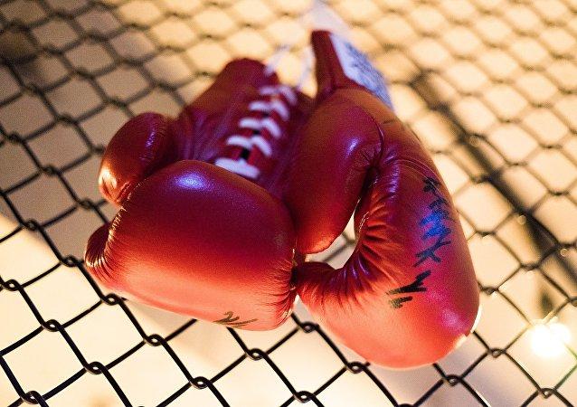 Luvas de Boxe (imagem de arquivo)