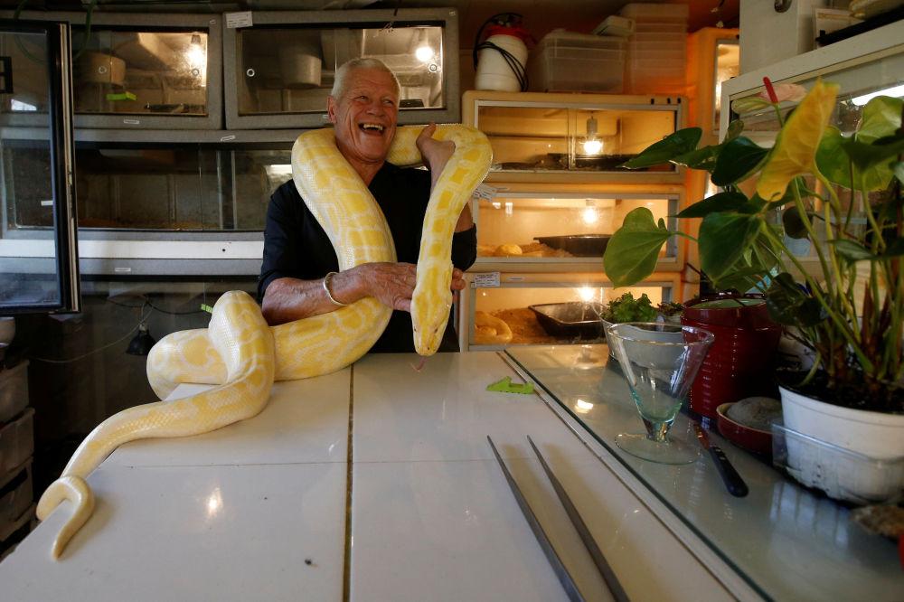 Francês Philippe Gillet, de 67 anos, posa com píton albina em sua casa em Coueron, perto da cidade francesa de Nantes