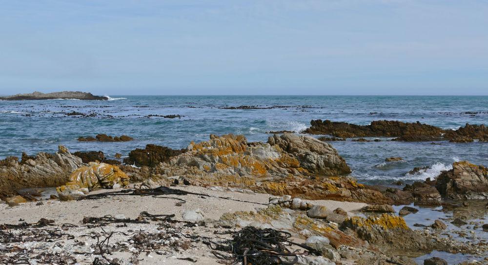 Praia em Gansbaai, África do Sul. A quantidade de predadores marinhos torna o local uma das capitais dos tubarões, já que a diversão popular aqui é o mergulho em uma gaiola para observar estes predadores marinhos