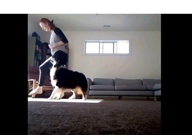 Menina ensaia passos de dança com seu cachorro