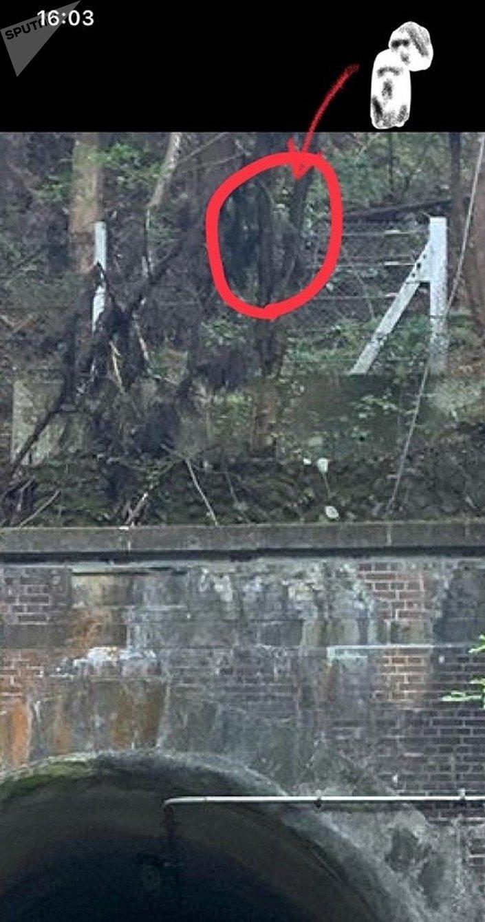 Fantasma gravado perto do túnel Komine, Japão