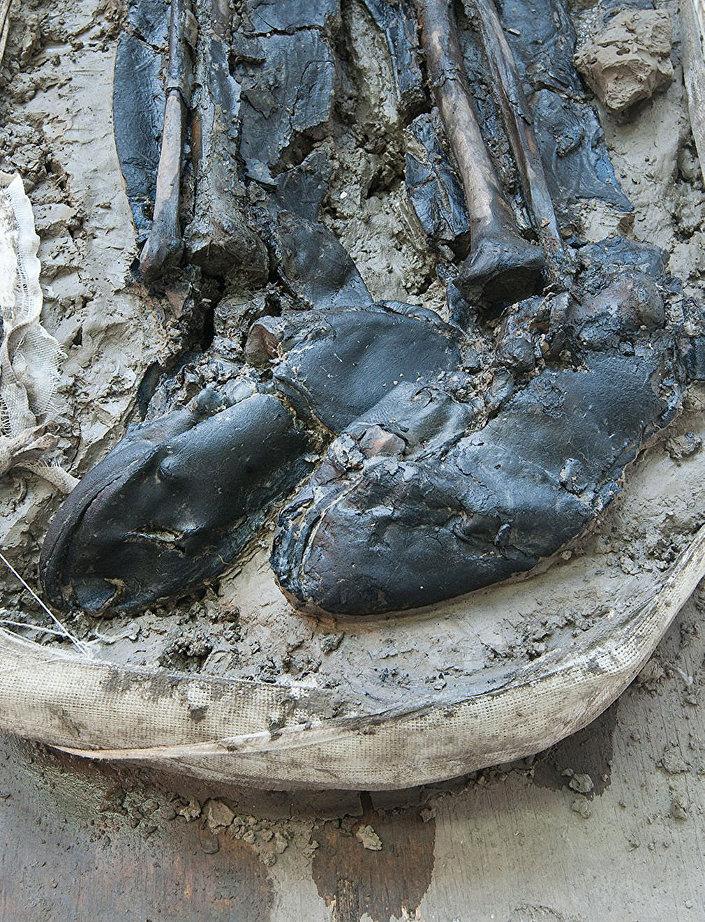 Esqueleto com botas de cana alto foi descoberto por arqueólogos no rio Tâmisa, em Bermondsey, Londres (Reino Unido)