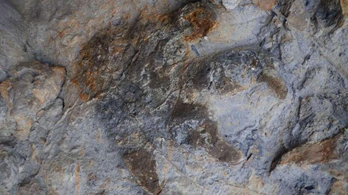 Pegadas de dinossauros encontradas na Inglaterra
