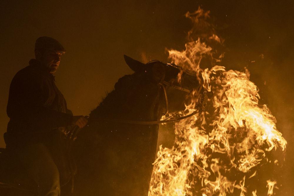 Cavalo durante o festival anual Las Luminarias no município espanhol de San Bartolomé de Pinares