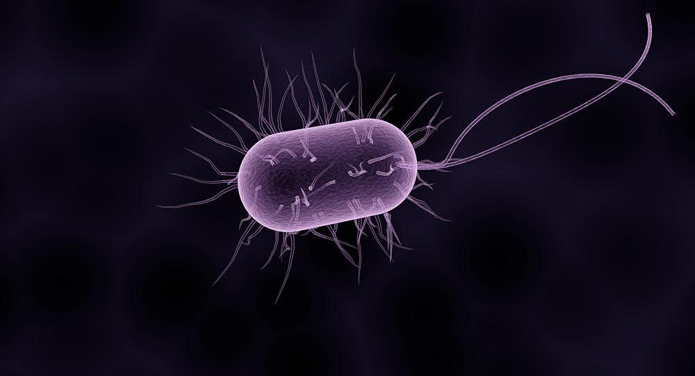 Bactéria (ilustração gráfica)