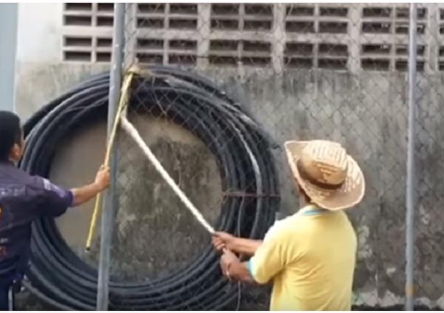 Píton em fuga fica presa em cerca metálica na Tailândia