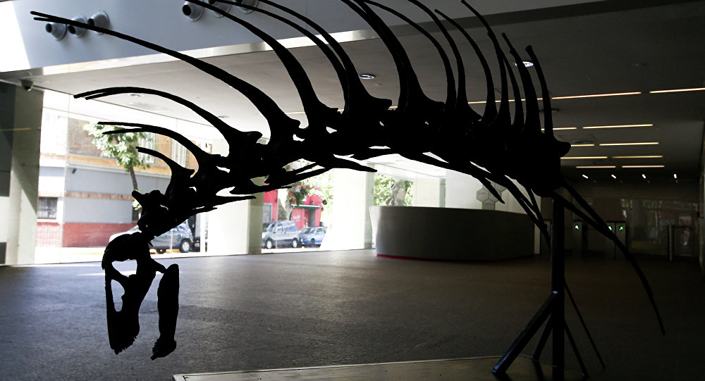 Dinossauro Bajadasaurus pronuspinax