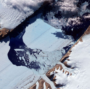 Enorme ilha de gelo se desprendeu da geleira Petermann, no noroeste da Groenlândia, em julho de 2012