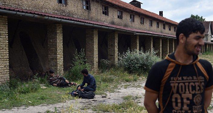 Refugiados na Sérvia perto da fronteira com a Hungria
