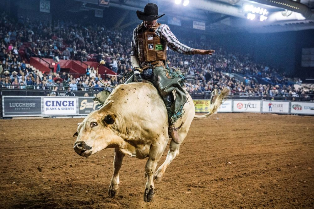 Participantes de competição de montaria de bois no âmbito de Tuff Hedeman Bull Riding Tour no Texas, EUA