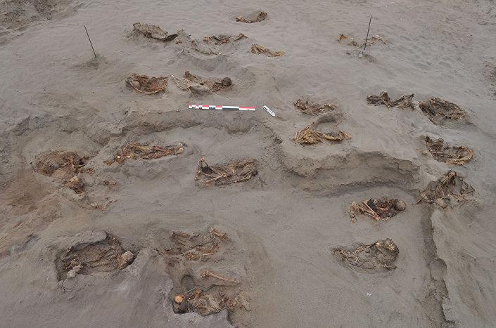 Esqueletos de crianças e de espécies de camelídeos enterrados para rituais no Peru, datado do século XV